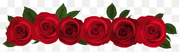 Download Flower Red PNG