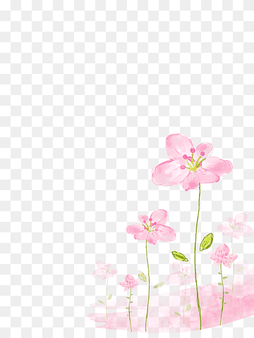 Download Pink Flowers PNG