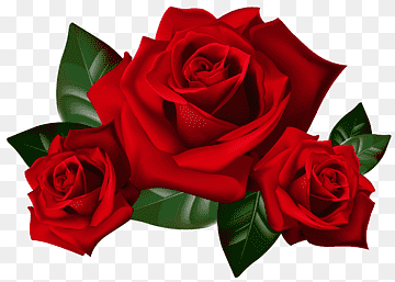 Download Red Roses PNG