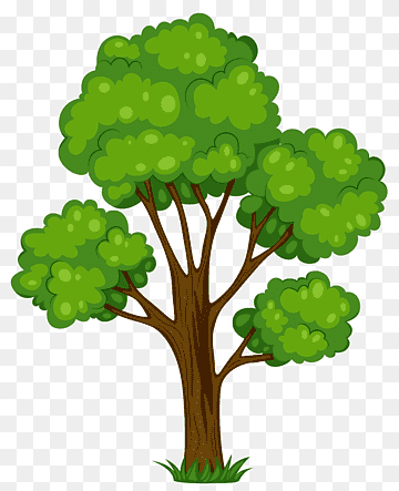 Download Tree Green PNG