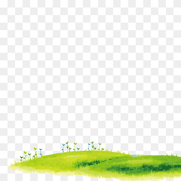 Download Green Grass PNG