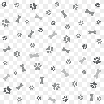 Download Paw White PNG