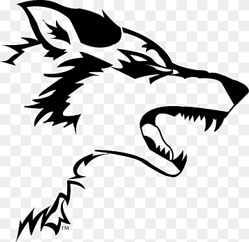 Download Wolf White PNG