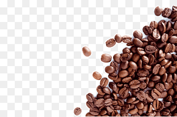 Download Coffee Bean PNG