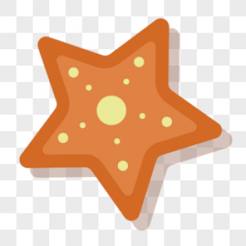Download Orange Starfish