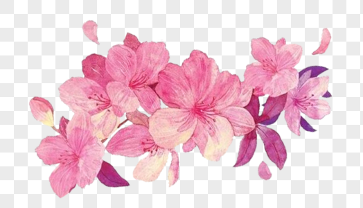 Download Pink Flowers